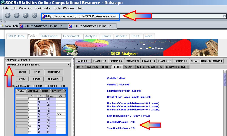 case 1 netscape final
